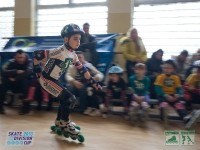 2013-03-17-54-skate-division-cup-in-line-force-motion